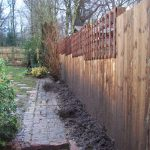 feather edge fence, fencing, trellis