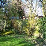 garden borders before planting design, london