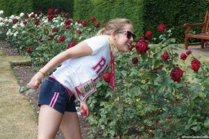 Greenwich park rose garden, Just Giving Race for Life, hari waterfield, rosa 'loving memory', cancer research