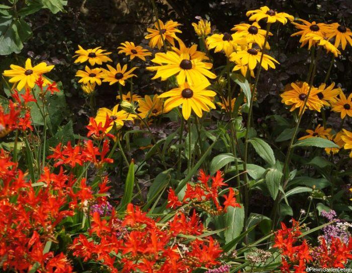 October gardening tasks gardening courses garden for Garden consultant