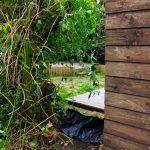 no garden fence - garden design, london, conservation area