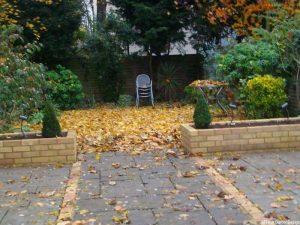 patio, brick raised beds, topiary, beckenham, bromley, garden design, autumn leaves