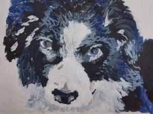 """Border collie puppy - illustration by Lucy Waterfield - """"In your summer garden with Plews Garden Design"""" - eBook"""