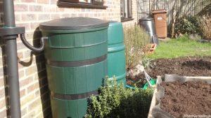water butts, raised beds, compost bin, edible garden