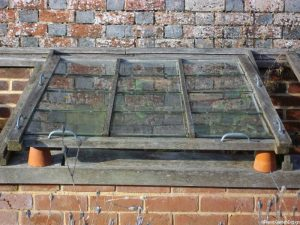 coldframe -downe house, darwin