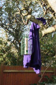 birdfeeder with squirrel proof surround, Plews garden design, garden birds