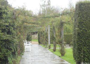 rose garden, Emmetts garden, kent
