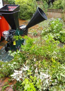 petrol garden shredder, pruned shrubs