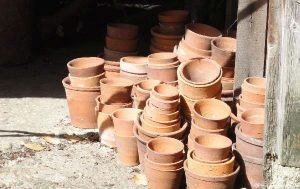 clay plant pots in potting shed, garden sundries