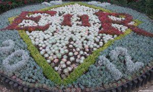 bedding display, Hever Castle, diamond jubilee, carpet bedding plants