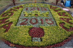 magna carta bedding scheme, bedding plants, RHS Hampton Court Flower Show, carpet bedding