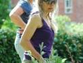 Marie, Jo, lychnis, planting, planting design, St Christophers Memory Garden 2016, Plews Garden Design, Plews Garden Landscaping, London