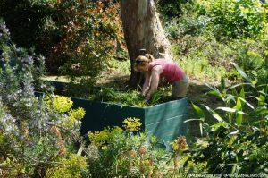holding bed for plants, plews garden design, plews garden landscaping, memory garden, st christophers hospice, volunteer