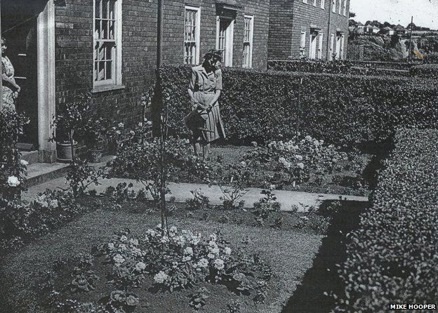 woman tending front garden, roses, lawn, hedge, becontree estate, london, bbc, decline of the front garden