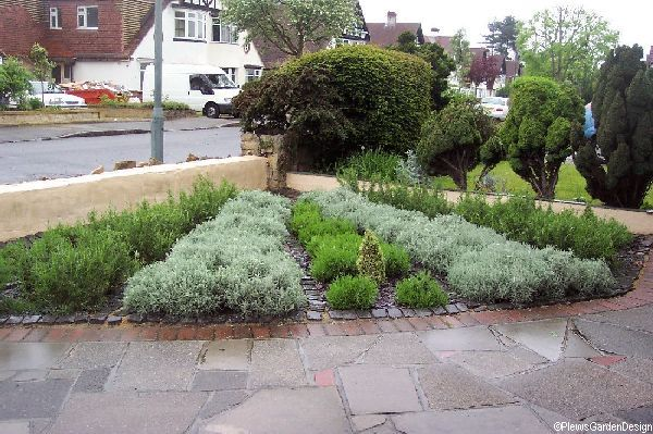 Topiary Easy Maintenance Gardening Garden Designer