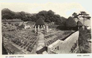 rose-garden-st-donats-castle-1926-peter-davis-collection