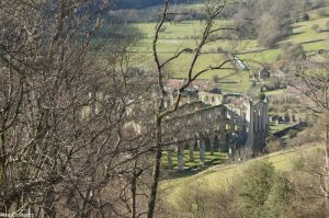 Rievaulx abbey from Rievaulx Terrace, yorkshire, picturesque landscape gardening style, national trust