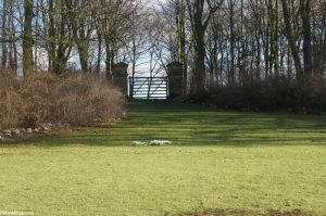 carriageway gate, snowdrops, Rievaulx Terrace, yorkshire, picturesque landscape gardening style, national trust