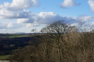 view from Rievaulx Terrace, trees and clouds, yorkshire, picturesque landscape gardening style, national trust