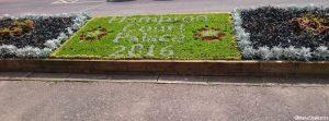 carpet bedding display, hampton court station, hampton court flower show 2016, cineraria, coleus, sedum, sempervivem