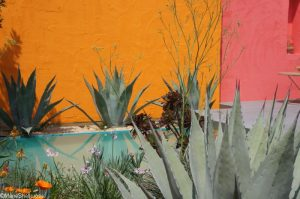 Beneath a Mexican sky garden, bright colour & Shadows, fresh gardens, RHS Chelsea Flower Show 2017