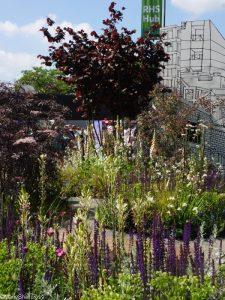 RHS greening grey britain garden 2017, RHS Chelsea Flower Show 2017