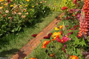 anneka rice colourful cutting garden , RHS Chelsea Flower Show 2017, bbc radio 2 feelgood gardens