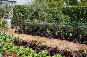 chris evans taste garden, bbc radio 2 feelgood gardens, RHS Chelsea Flower Show 2017
