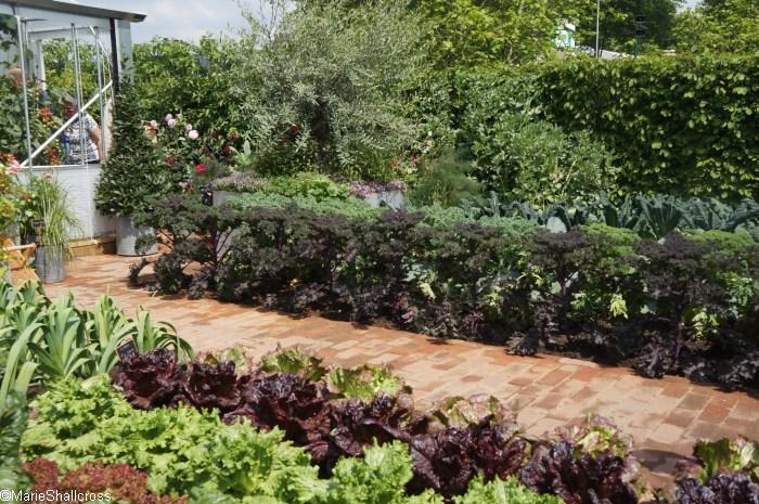 Rhs chelsea flower show 2017 garden designer garden for Garden consultant