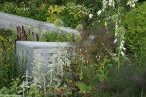 jo whiley scent garden, bbc radio 2 feelgood gardens, RHS Chelsea Flower Show 2017