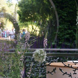 reflections , CWGC centenary garden, artisan gardens, RHS Chelsea Flower Show 2017