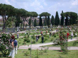 path layout in shape of Menorah, roseto di roma, roseto comunale, italy, rome, wiki commons photo