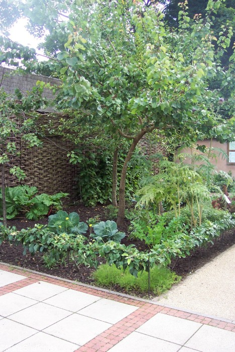 Gardening Inspiration From Ancient Roman Gardens And Gardeners
