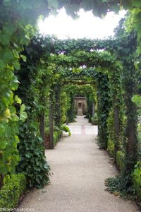 pergola with vines, roman garden chester zoo