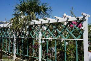 beaches of fort myers garden, world gardens, great gardens of the USA, rhs hampton court flower show 2017