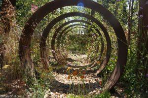 brownfield metamorphosis garden , Gardens for a Changing World, rhs hampton court flower show 2017