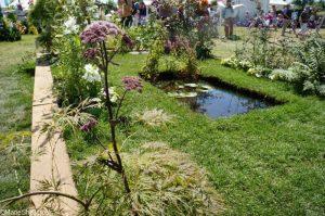butterflies at dawn, flower & vegetable boxes, rhs hampton court flower show 2017