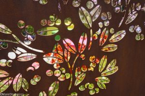 colour box garden, Show gardens, rhs hampton court flower show 2017