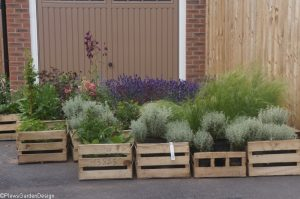 first plant delivery, ornamental edible garden, garden designer, garden desgn, planting design, garden project, plant delivery, trade nursery, plant nursery