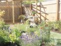 garden full of flowering plants, garden design, planting design,garden project, pergola, decking, artificial lawn, ornamental edible gardens,