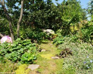 london glades garden, Gardens for a Changing World, rhs hampton court flower show 2017