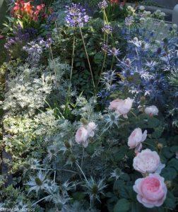 on the edge garden, Show gardens, rhs hampton court flower show 2017