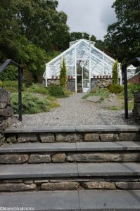 steps to tufa house, alpine house, glasshouse, victorian pit house, holehird gardens, lakeland horticultural society