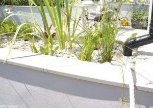 urban rain garden, Gardens for a Changing World, rhs hampton court flower show 2017