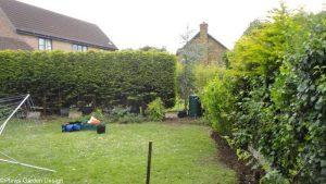 old fence removed, conifer hedge. garden fencing, garden project in progress, garden designer