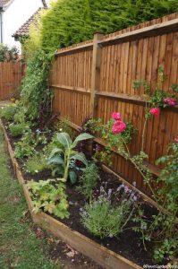 new feather edge fence, newly planted border, planting scheme, garden project in progress, garden designer
