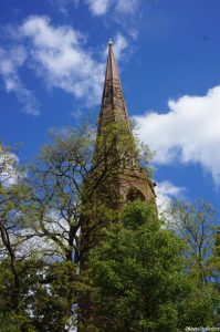 street tree and church spire, urban trees, cityscapes, coventry