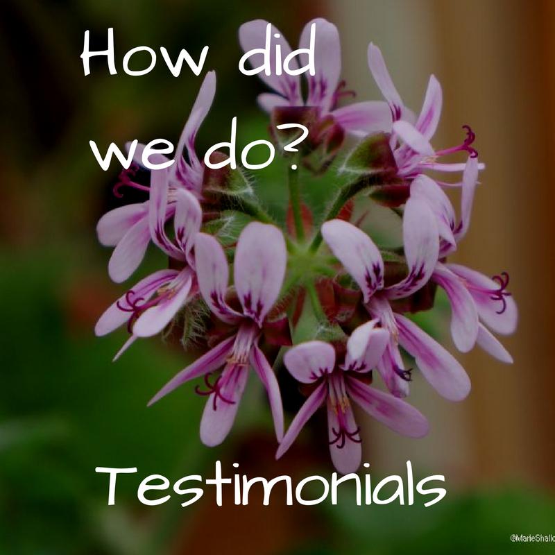 How did we do, Testimonials, plews garden design