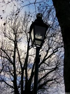 lamp post, winter trees