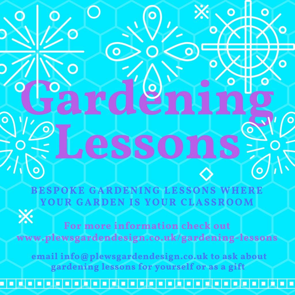 gardening lesssons, gardening courses